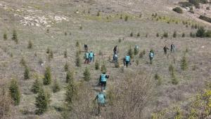Dinar'da Yükümlüler Adalet ormanına fidan dikti