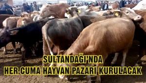 Sultandağı'nda ilk hayvan pazarı yarın kurulacak