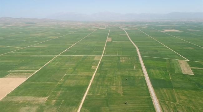 Afyonkarahisar Arazi Toplulaştırma Çalışmaları Tüm Hızıyla Devam Ediyor