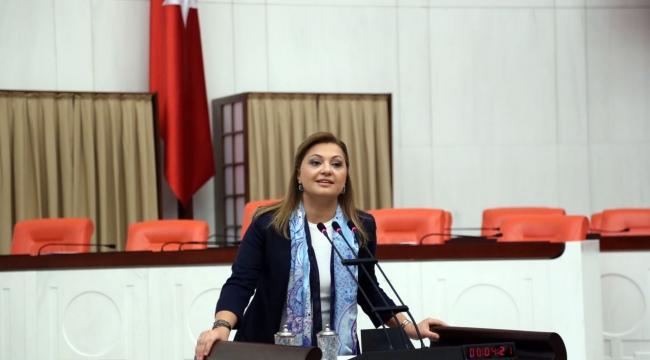 Milletvekili Köksal, TBMM'de halkın sesi oldu