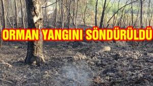 Afyonkarahisar'da çıkan orman yangını kontrol altına alındı