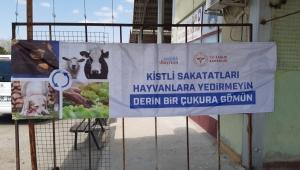 Sağlık Müdürlüğü Hayvanlardan insanlara geçebilecek hastalıklar konusunda uyardı