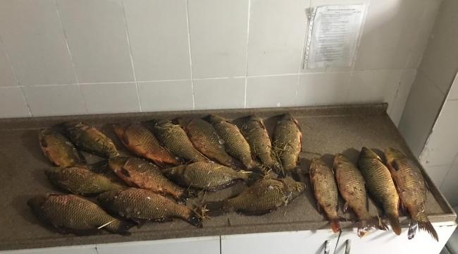 Son Dakika….Afyonkarahisar'da Kaçak balık avcıları suçüstü yakalandı