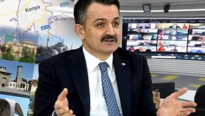 Türkiye'de Gıda Arz Güvenliğinde Sıkıntı Yok