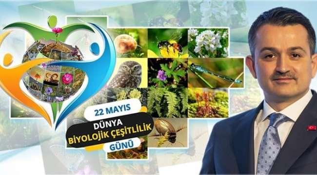 22 Mayıs Uluslararası Biyolojik Çeşitlilik Günü 'Çözümlerimiz Doğadadır'