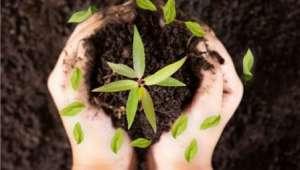 Afyonkarahisar'da Organik ve Organomineral Gübre Kullanan çiftçilere destek ödemesi başladı
