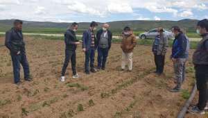 Akaparti'den açıklama: Afyonkarahisar'da Dondan zarar gören çiftçilerimizin yanındayız takipçisi olacağız