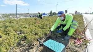 Başkent'te Damla Sulama Sistemi Yaygınlaşıyor