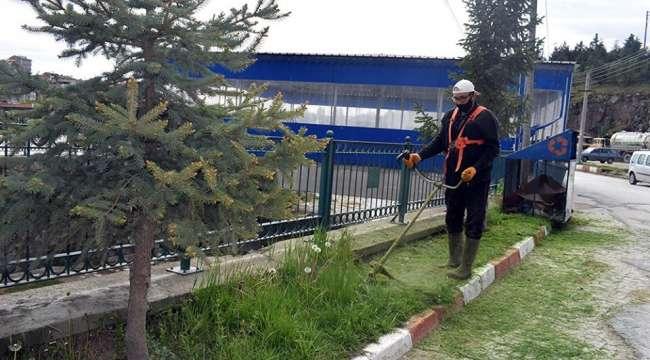 İscehisar'da yeşil alan ve parklar düzenleniyor