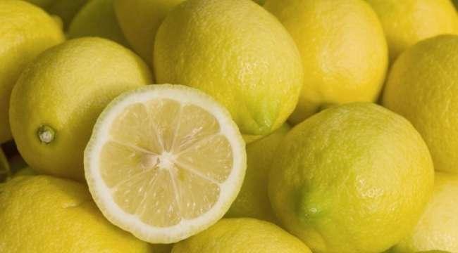 Tarım Bakanlığı'ndan limon ihracatına izin