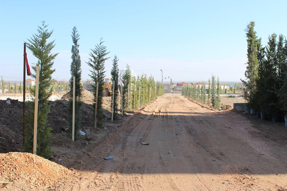 Emirdağ Belediyesi Yeşillendirme Ve Ağaçlandırma Çalışmaları Devam Ediyor